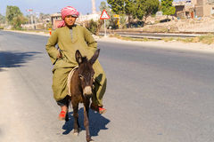 Man and the donkey Stock Photography