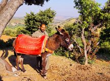Man with a donkey in Morocco Stock Photos