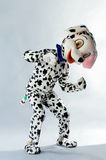 A man dressed as a dog Dalmatians Royalty Free Stock Photography