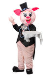Man dressed as a pig with a tray Royalty Free Stock Photo