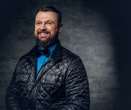 A man dressed in a blue shirt, black jacket and a bow tie over g. Studio portrait of bearded male dressed in a blue shirt, black jacket and a bow tie over grey royalty free stock image