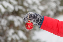 Man dressed in a fur coat hanging a red christmas ball on fir cl Stock Image