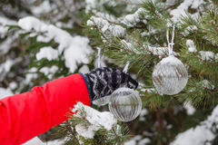 Man dressed in a fur coat hanging a red christmas ball on fir cl Stock Images