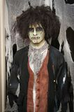 Zombie. A man dressed in a zombie costume for Halloween Stock Images