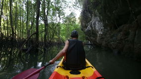 Man drifts kayak past cliff and mangrove trees stock video