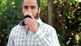 Man drinking glass of red wine stock video
