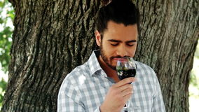 Man drinking glass of red wine stock footage