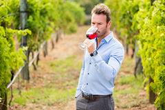 Man drinking red wine Royalty Free Stock Photos