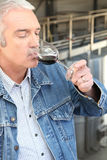 Man drinking wine Stock Photos