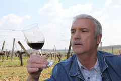 Man drinking wine in field Stock Photo