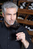 Man drinking wine. A glass of red wine for dinner. Man drinking wine Royalty Free Stock Photos