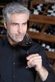 Man drinking wine Royalty Free Stock Photos