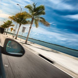 Man driving a car across paradise road with palms and ocean Royalty Free Stock Photos