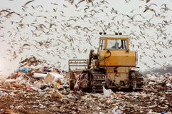 Man driving a garbage truck on a landfill Royalty Free Stock Photography
