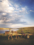 Man Driving Horse Cart Scenic View Nature Tranquil Concept Stock Photography