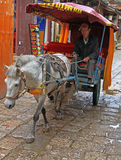 Man is driving horse-drawn vehicle  in Lijiang Stock Photo