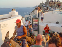 Man driving horses up steps in Santorini Royalty Free Stock Images