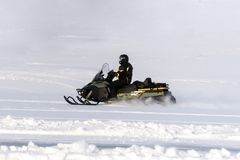 Man driving sports snowmobile in Finnish Lapland in a sunny day royalty free stock image