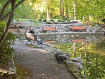 Man at Duck Pond in Autumn. Senior man sitting on a bench beside a duck pond tree leaves reflected in the water at Lithia Park in Ashland, Oregon Royalty Free Stock Image