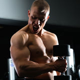 Man at Dumbbell training in gym Royalty Free Stock Photography