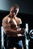 Man at Dumbbell training in gym Stock Images