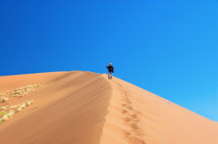 Man on dunes of Namib desert, Namibia Royalty Free Stock Photography