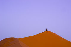 A man on the dunes at sunset Royalty Free Stock Image