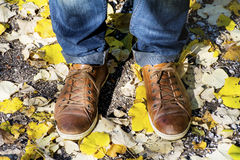 Man'e buty w suchych jesień liściach Zdjęcie Royalty Free