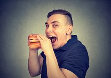Man eating craving a tasty burger. Side profile of a funny looking young man eating craving a tasty burger Royalty Free Stock Photo