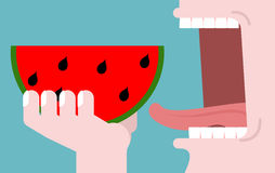 Man eating watermelon. fruit consumption. Red fresh slice of wat Stock Photography