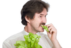 Man eats sheet of the salad Stock Photo