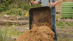 Man, emptying wheelbarrow, manure stock video