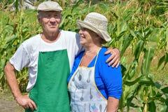 Man en vrouw in de tuin royalty-vrije stock afbeeldingen