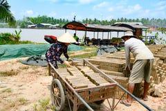 Man en vrouw die met de hand gemaakte bakstenen in handbarrow laden om het voor het branden in oven dichtbij Mekong Rivier, Vietn stock fotografie