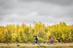 Man en vrouwen berijdende die fietsen langs een weg door kleurrijke dalingsbomen wordt omringd stock afbeelding