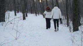 Man en vrouwen het lopen hond in bos stock footage
