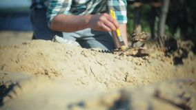 The man is engaged in excavating bones in the sand, Skeleton and archaeological tools. 4k stock video footage