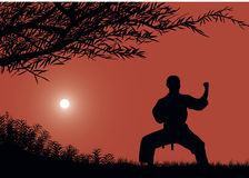 The man is engaged in karate. The man is engaged in karate against the sun stock illustration