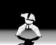 the man is engaged in karate on a black white Stock Photography