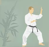 The man is engaged in karate. Royalty Free Stock Photo