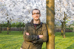 Man enjoying blossom trees Royalty Free Stock Image
