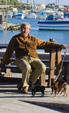 Old Man relaxing. A man enjoying the compnay of his three dogs while sitting on a brown bench in the sun on New Years Day 2014 at Maltese fishing village Stock Images