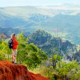 Man enjoying stunning view into Waimea Canyon Stock Image