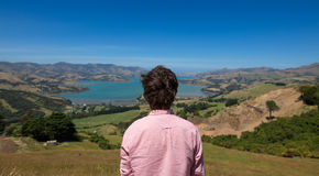Man enjoying view, New Zealand. Rear view of a man looking at landscape, New Zealand Royalty Free Stock Photo