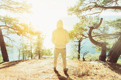 Man enjoying view of sea. Young man standing on coast in the forest among pine trees and looking at sea in sunny day, rear view Royalty Free Stock Image