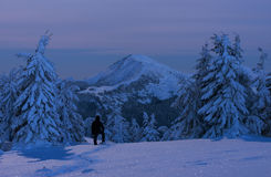 Man is enjoying view of winter mountain in twilight Stock Photography