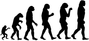 Man Evolution cartoon Vector Clipart Royalty Free Stock Image