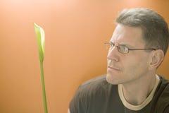 Man examining Cala Lily plant Royalty Free Stock Photo