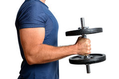 Man exercising biceps muscle with dumbbell Stock Photo