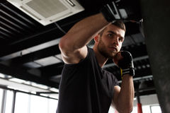 Man exercising boxing in gloves Stock Photography